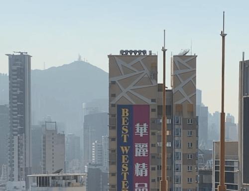 【ASSORT TOKYO】assort hongkong